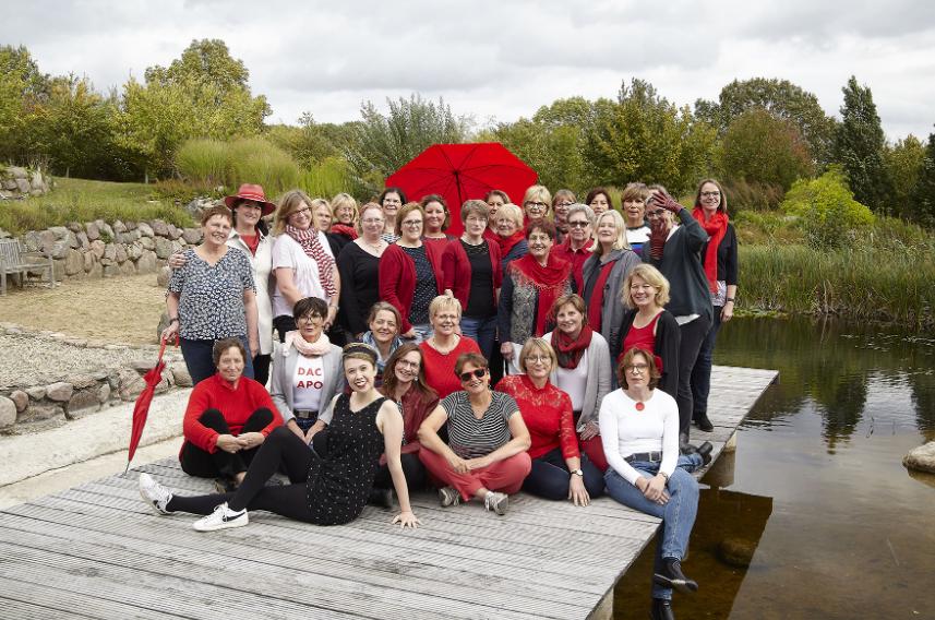 Frauenchor aus Bargteheide sucht neue Chorleitung